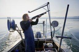 Quand un pêcheur doit chasser