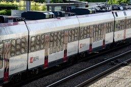 Vaches heurtées par un train à Montet