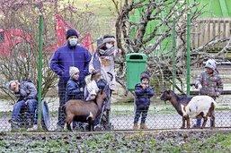 Au zoo, les humains s'évadent
