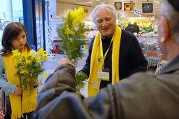 La Croix-Rouge fribourgeoise ne vendra pas de mimosa cette année