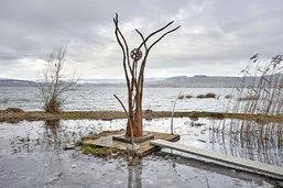 Vertige  au bord du lac de Morat