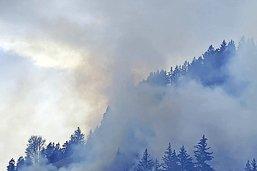 Sinistre impressionnant, mais peu d'arbres brûlés